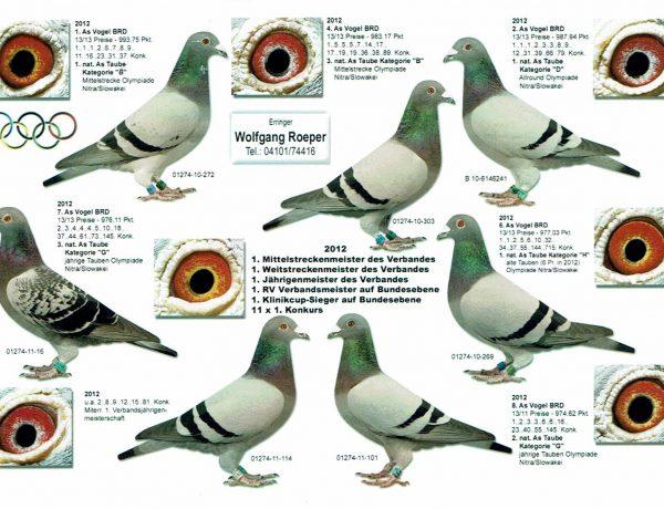 Roeper Tauben