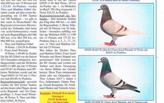 Veröffentlichung Taubenmarkt