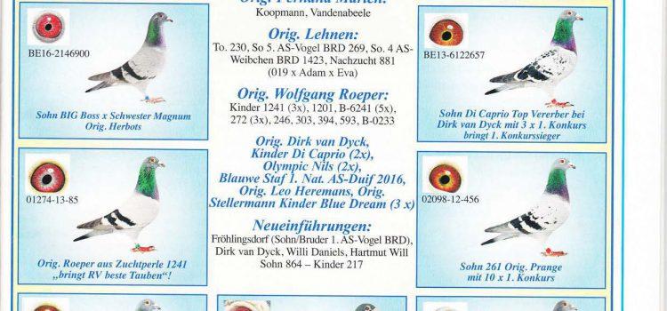 Veröffentlichung Taubenmarkt 12/2017 Reise & Zucht